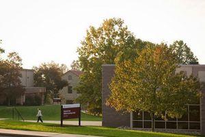 montana state university application status