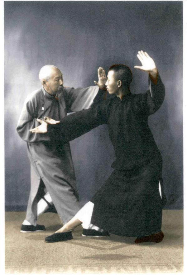 yang style tai chi applications fighting techniques