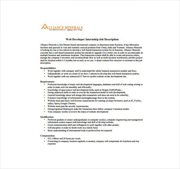 application programmer duties and responsibilities