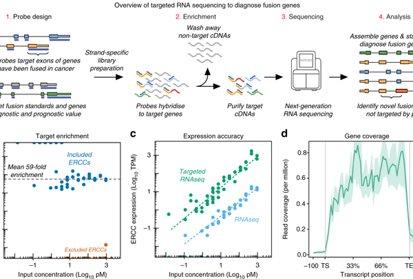 clinical applications for next generation sequencing