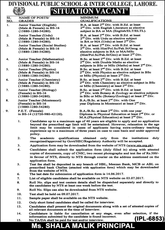 junior vets application form 2017