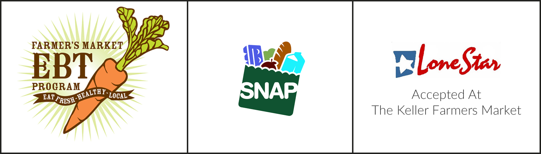 lone star card application online