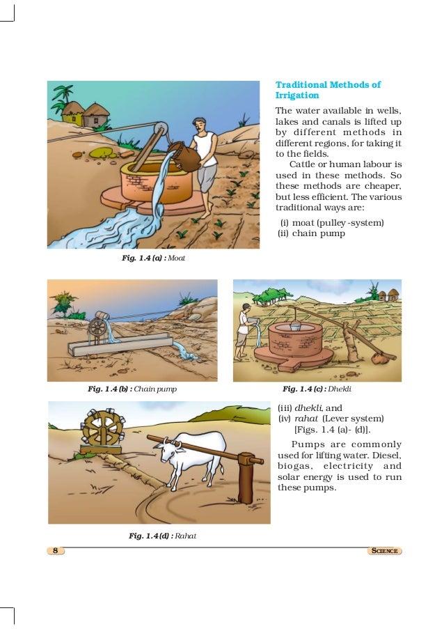 methods of fertilizer application in fruit crops