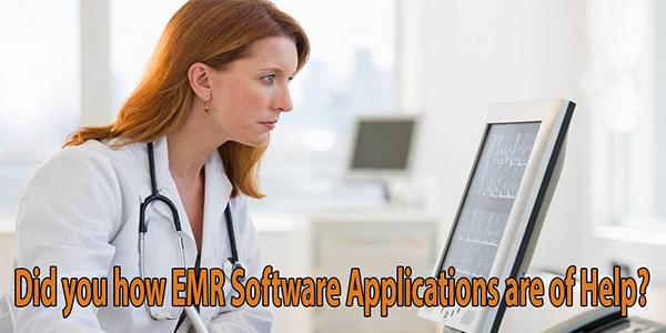 what does application software do